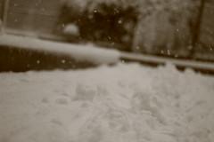 IMG_6431 (pellegrini_paris20) Tags: snowflake schnee white snow paris canon eos flake neige weiss blanc ville flocons flocon itsnows flocke flocken schneeflocke schneit flocondeneige souslaneige esschneit floconsdeneige ilneige 1000d