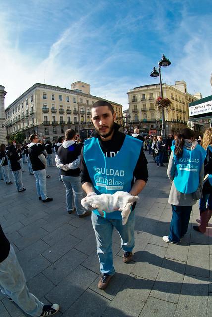 11/12/10 - Madrid - Día Internacional de los Derechos Animales | International Animal Rights Day