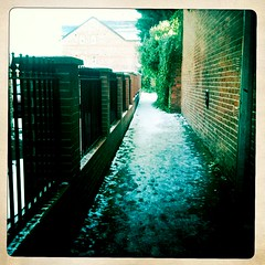 A back path in Withington