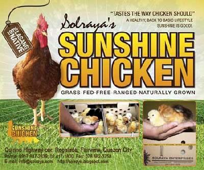 Solraya Sunshine Chicken