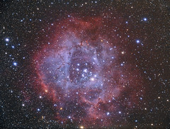 Rosette Nebula (caldwell 49) (Terry Hancock www.downunderobservatory.com) Tags: camera sky mountain night digital canon stars photography pier backyard mark shed images astro observatory telescope ii astrophotography terry 5d astronomy imaging hancock dslr ccd universe instruments amateur rosette cosmos deepspace tmb osc astronomer teleskop astronomie byo f7 refractor ngc2237 astrofotografie mi250 astrophotographer Astrometrydotnet:status=solved 130ss tmb80ss Astrometrydotnet:version=14400 caldwell49 Astrometrydotnet:id=alpha20101212008009