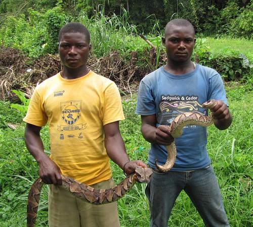 snake boys of Ubundu