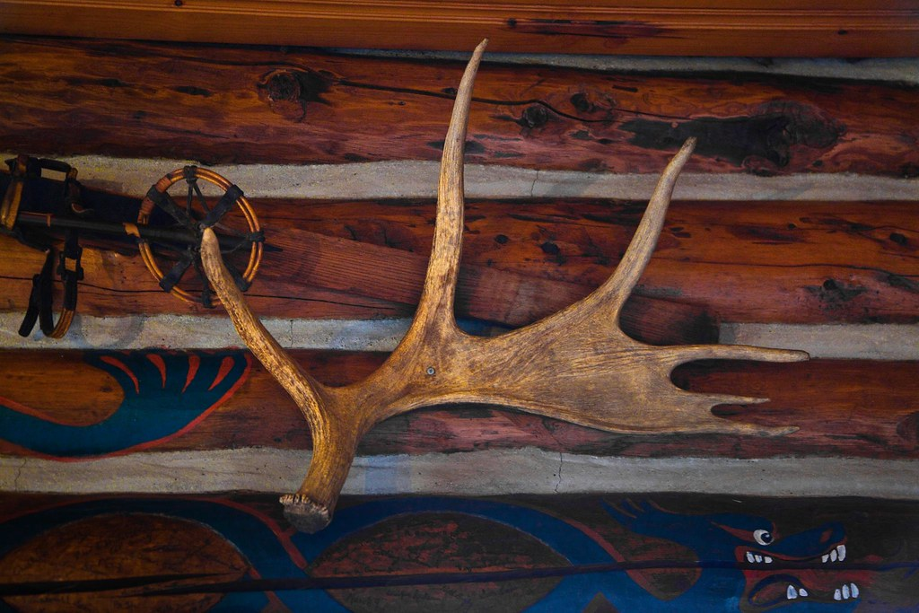 Moose Antler inside Mount Assiniboine Lodge