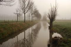Mistig Rhijnauwen III (junlal) Tags: trees light mist holland reflection tree water netherlands fog contrast landscape licht nevel bomen nikon utrecht nederland boom lucht landschap weerspiegeling
