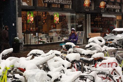 Haia: bicicletas