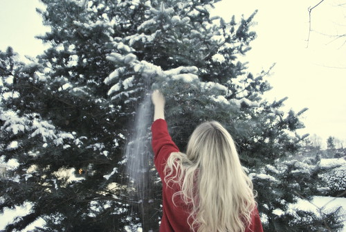 Follow me to Narnia