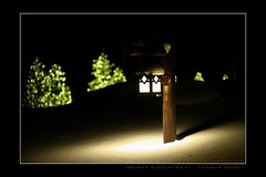 Christmas Wishes - Souhaits de Nol (FLickr EXPLORE 2010/12/23) (SergeK ) Tags: christmas new family winter light party white lake holiday inspiration snow tree green reunion k yellow festival lanterne bells season reindeer cards happy lampe amber candles bokeh spirit jubilee hiver year joy parades wrapped frosty noel scrooge grinch angels presents sing neige greetings cheer merry wish jolly celebrate bonheur jingle nativity joie sapin champ redgreen serge magie joyeux blck sergek placidusa2010decembredecember