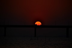 Don't take my sunset away  (jason_cykwong) Tags: bridge sunset shadow sea water yellow soleil container       deepbay  silhouett     laufaushan