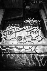 (AngieBphoto) Tags: newyorkcity bridge newyork cake brooklyn graffiti utah juice duet traintracks tracks murals ewok elbowtoe williamsburg 17 spraypaint tribute wish graff neckface dee yonkers rem dart trap backfat westchester hert 5points builiding jayr miss17 jick 5ptz rk9 dyrect rem311 wisher wish914 ms17 faip