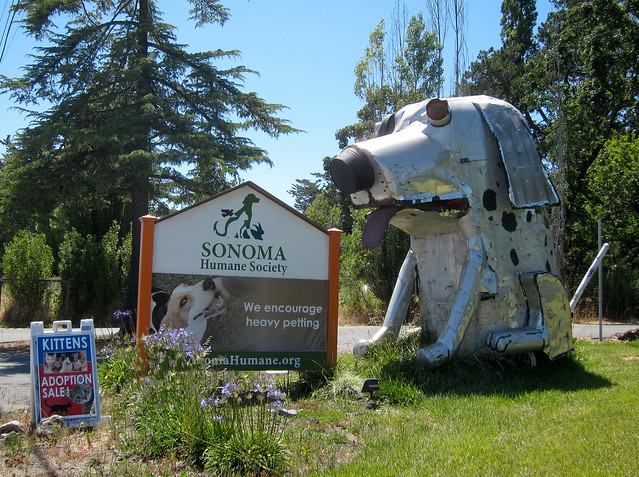 Giant Dog Sculpture