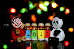 welCome 2011 (G) Tags: new canon happy 50mm you glory year welcome wish  500d    2011 canon500d   i     500