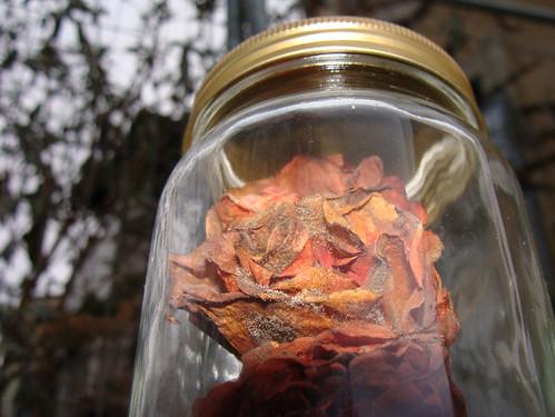 Jar 1 close up