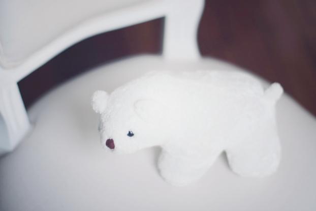 polar bear 06