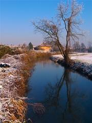 I riflessi dell'inverno (fabry ... ) Tags: winter fabrizio inverno iver circolofotograficopaullese ricohgx200