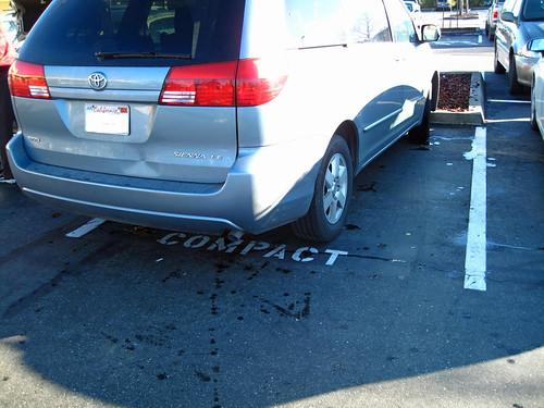 20110103 Idiot Parking