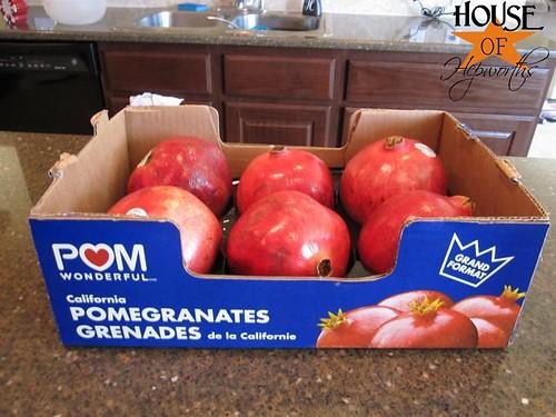 HoHryrpomegranate01