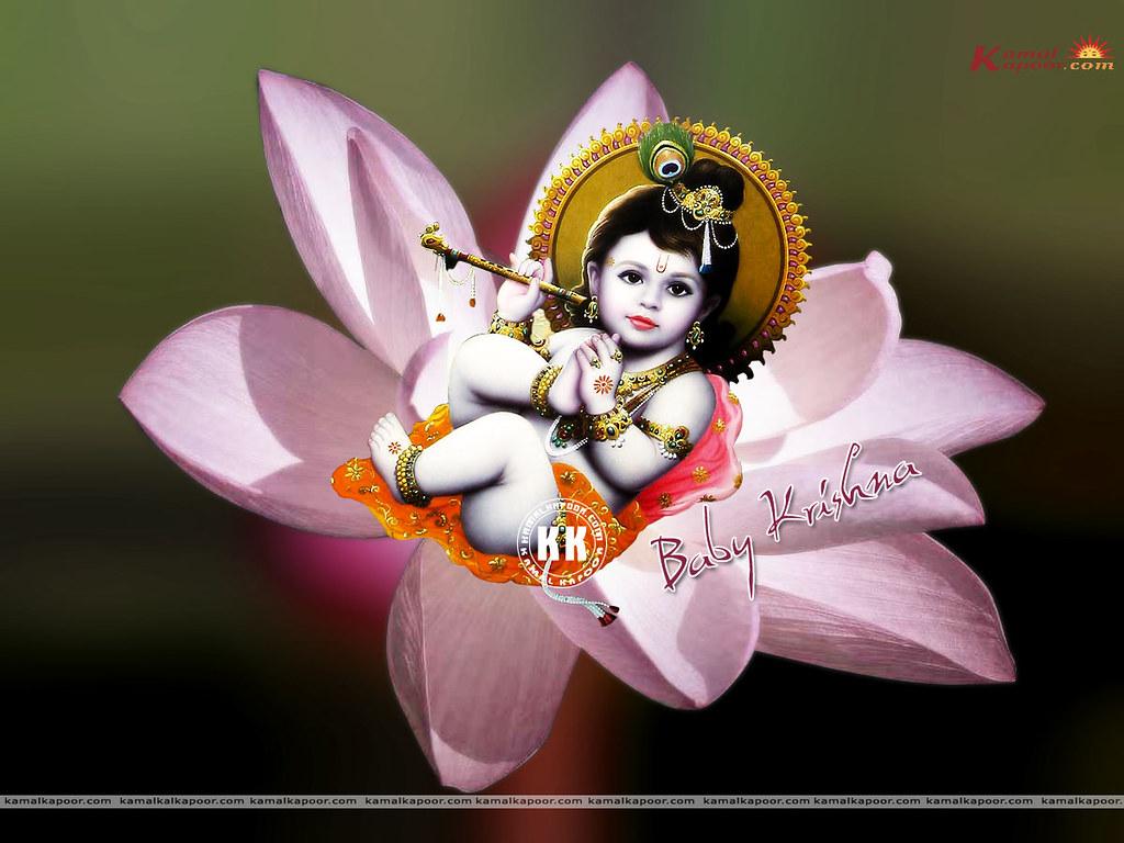 Baby Krishnaa Pictures