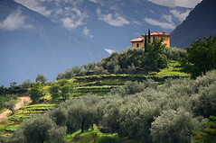 The House on the Hill, above Riva del Garda (Charlotte Brett Photography) Tags: italy house riva hill lakegarda