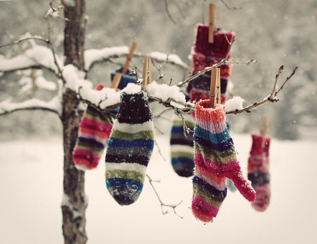289/365 Snowy Day