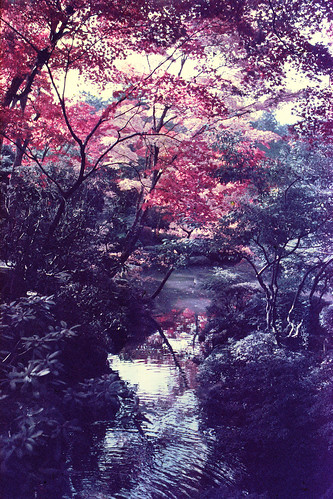 Rinoh-ji Shouyou-Garden