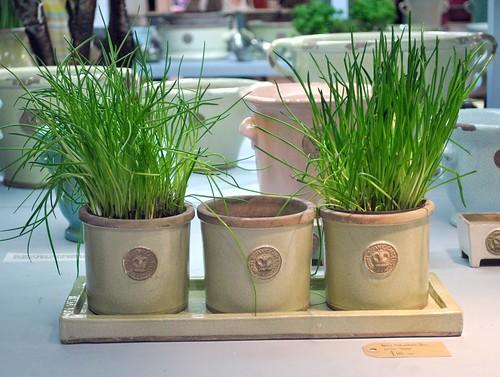 Terrace & Garden herb pots