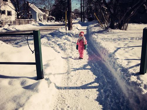 on a snowy morn