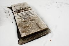 (cw3283) Tags: winter snow cold philadelphia cemetery grave graveyard weather philly phila laurelhillcemetery jacoblukens williamsjamesplunkett florencelouisalukenplunkett louisemichellemeador michelineallen