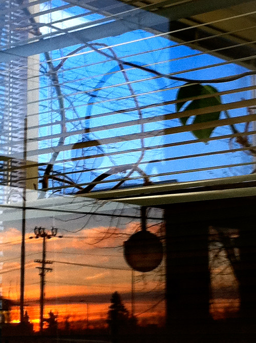 sunset through a window at East 8th Avenue, Anchorage, Alaska