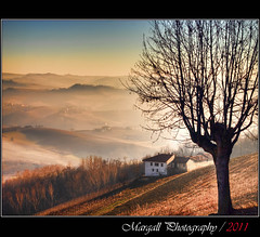 The tree on the hill - HDR - Novello - Cuneo - Italy (Margall photography) Tags: italy panorama house mist tree fog canon landscape photography casa italia shadows sigma ombre marco nebbia albero cuneo hdr langhe 30d foschia galletto margall novello mygearandme