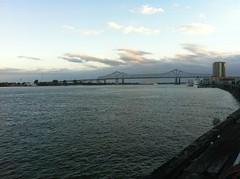 Banks of Mississippi River