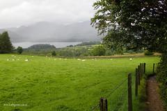 e keswick rainy view (Simon -n- Kathy) Tags: keswick england lakedistrict lakelands hike rain walk castlerigg