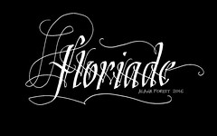 floriade (A L A N A) Tags: floriade flowers flowershow canberra australia filamenti flourish dropcap cadel grid calligraphy