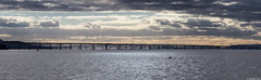 Firth of Tay; Broughty Ferry, Dundee, Scotland (Michael Leek Photography) Tags: tay firthoftay dundee scotland broughtferry estuary michaelleek panorama panoramic thisisscotland awesomescotland scottishlandscapes scotlandslandscapes scottishcoastline michaelleekphotography clouds weather sunset light bridge bridges architecture coast coastline autumn easternscotland