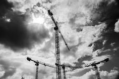 Chantier_grues.2 (e_Ag) Tags: chantier grues cranes noiretblanc