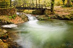 Colores de Otoño (jrtorre) Tags: naturaleza nature water rio puente hojas lluvia agua nikon arboles bosque otoño nublado fotografia frío cantabria 2010 espuma d300 ucieda rinconesdecantabria jrtorre