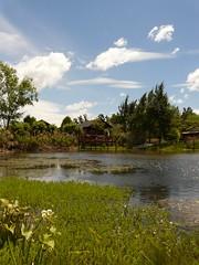 La cabaa de la laguna (FernandoRey) Tags: 3 argentina lago agua buenos aires safari cielo nubes grupo tres laguna isla nube cabaa portea bocas