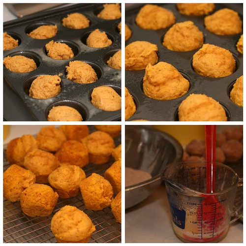 Adapted from: Pumpkin Doughnut Muffins from Everyday Food (November ...
