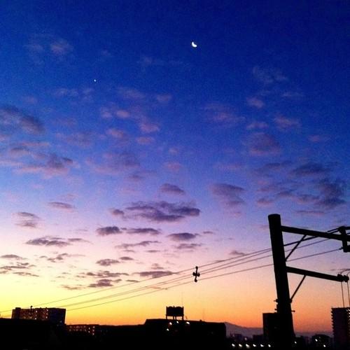 今日の写真 No.88 – 昨日Instagramに投稿した写真(4枚)/iPhone4 + Photo fx
