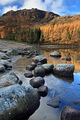 Blea Tarn 2010 IV (rgarrigus) Tags: autumn trees england reflection fall landscape europe lakedistrict cumbria tse bleatarn landscapesshotinportraitformat