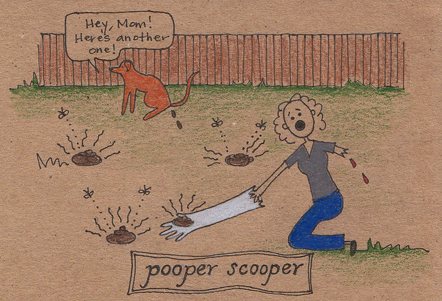 pooper scooper