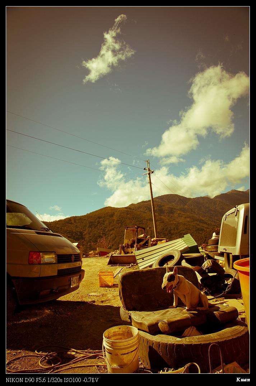 991201武陵農場-楓印