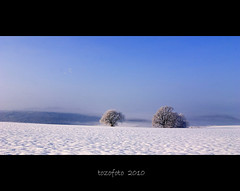(tozofoto) Tags: morning trees light snow colors birds canon landscape frost hungary natur zala supershot abigfave anawesomeshot tozofoto saariysqualitypictures