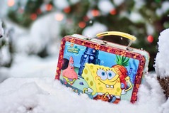 338/365: Lunch in the Snow With Spongebob! (pixelmama) Tags: snow december bokeh christmaslights pineapple spongebob lunchbox firstsnow 2010 songebobsquarepants yews hcs project365 3652010 clichesaturday wholivesinapineapoleunderthesea