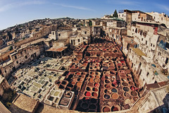 Fez tannery. http://www.fischerfotografie/reizen (fischerfotografie.nl) Tags: world africa trip travel vacation tourism canon day tour place sightseeing visit location tourist fisheye morocco journey fez maroc planet destination leader lonely sight traveling visiting exploration touring illuminate tannery fs muslimtravel producingleader manufacturingleader moroccotourism citytripmarocco citytripfez holidayfez