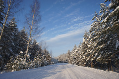 Snowy Road near Pannjrve (tarmo888) Tags: winter snow vanishingpoint nice europe estonia day sony capture lumi idavirumaa eesti estland  photoimage sooc sonyalpha welcometoestonia visitestonia gisteqphototrackr sony geosetter year2010 geotaggedphoto projectweather nex3 sel16f28 foto positivelysurprising gettyimagesestoniaq2