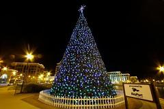 City Center Christmas Tree (mrbrkly) Tags: christmas city news tree happy lights virginia holidays center nighttime newport shooting