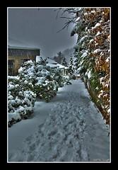 IL vicolo.... (Barbynikon) Tags: world snow beautiful d50 casa blackwhite reflex nikon foto image digitale ombra sigma ombre luci natale notte bianconero luce paesaggio citta ghiaccio paese pianeta wülfrath