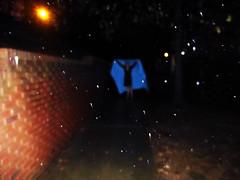 Focus on the Rain (Casey David) Tags: blue tree grass leaves rain night lights leaf movement focus branch dof bricks cyan days sharp depthoffield sidewalk sheet 365 365project