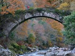 El otro lado del puente............ (T.I.T.A.) Tags: puente otoño tita apontenova riolerez caminandojuntos carmensolla caminandojuntosporelriolerez carmensollafotografía carmensollaimágenes