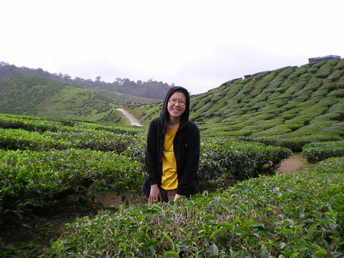 Mel @ the tea plantations, Cameron